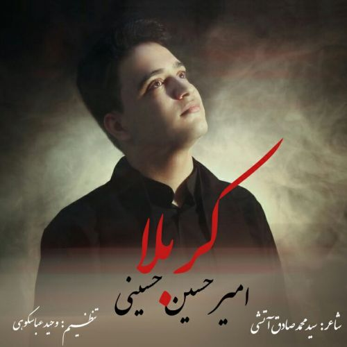 دانلود موزیک جدید امیر حسین حسینی کربلا